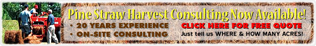 Pine Straw Harvest Consulting